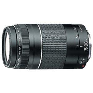 Objetivos Canon 75-300 EF