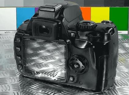 Modelo Nikon d40x