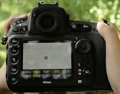 Modelos Nikon d810