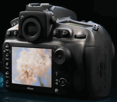 Nikon d810 pantalla