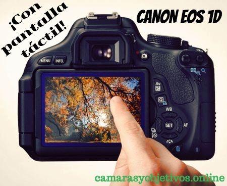 Canon cámara Eos 1d