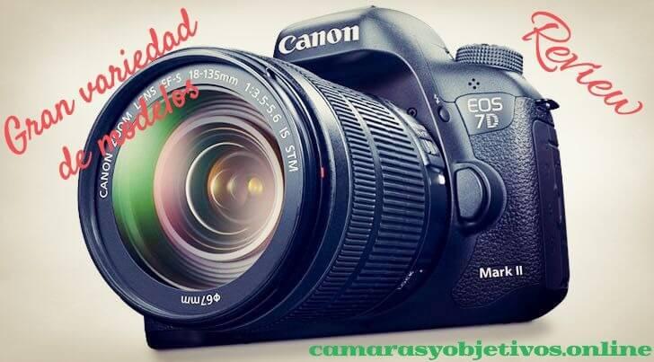 Canon review cámara 7d